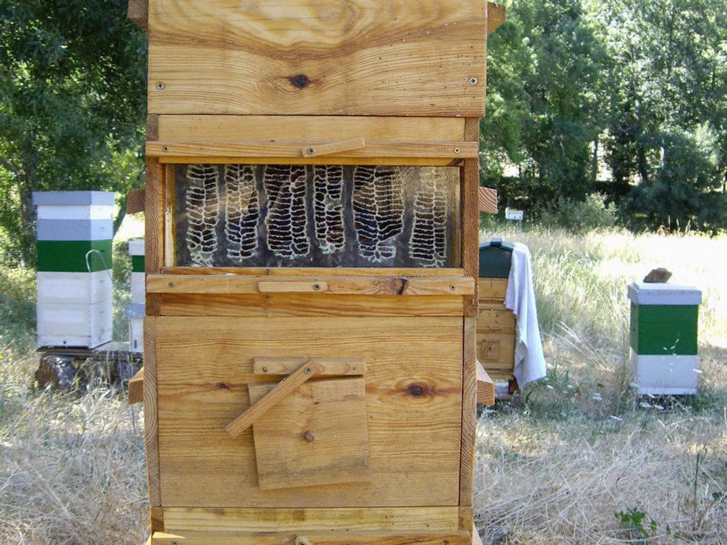 Warre Bienenstock