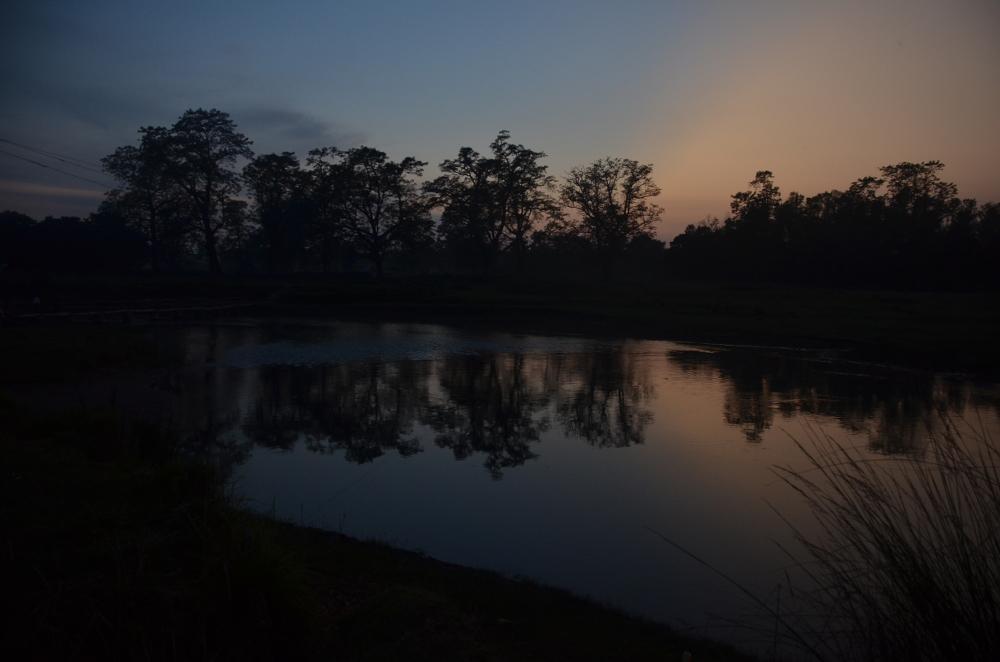 Unser letzter Sonnenuntergang im Dschungel von Chitwan.