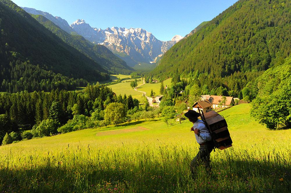 Mann wandert durch Natur in Slowenien