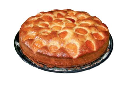 Rezept Aprikosenkuchen mit frischen Aprikosen