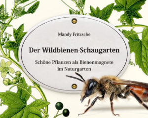 Wildbienen-Schaugarten