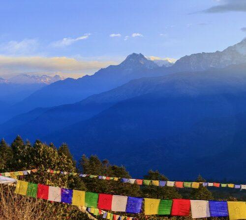 Nepals Honigjäger Foto: AdobeStock_amthinkin