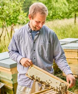 Bienen füttern mit Honig - Jasoer Heilmann, Foto: Antonios Mitsopoulos