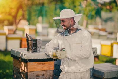 Bienenzucht-Profi.de