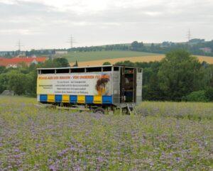 Bienenstand-Bienenwagen-Foto: Sabine-Rübensaat