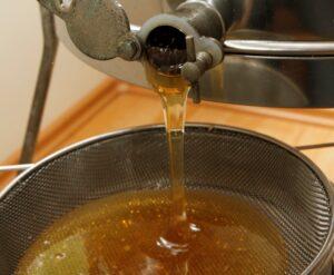 Honig-Honig-läuft aus der Schleuder in ein Sieb. Foto: Sabine-Ruebensaat