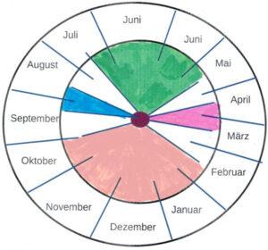 Imkerjahr. Die vier Phasen des Bienenvolks. Abbildung: Deutsches Bienenjournal