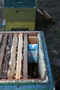 Bienenvölker hungern