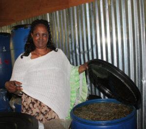 Honigwein - Imkern in Äthiopien - Foto: Silke Beckedorf